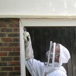 safely performing our wasp nest removal service in Bexhill